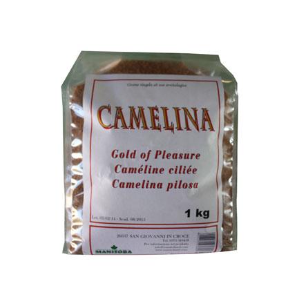 M 3669/S - Camelina Sativa 1 kg